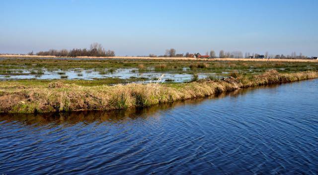 Het drassige land achter de dijk is ook fotogeniek!