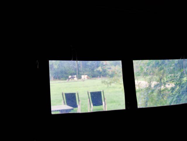 Het uitzicht op een weiland met koeien blijft ook in de regen geweldig.
