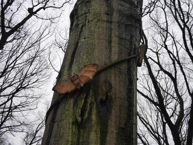 Oma Komi is dol op dieren, ze heeft er zelfs een paar in de boom gehangen