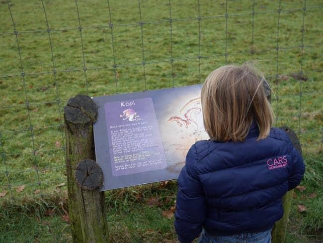 Pippa aan de wandel in de Hoge Kempen