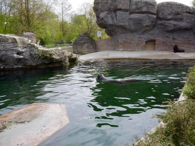 karlsruhe zoo - 2