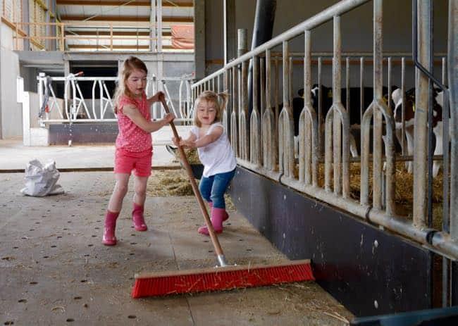 We gaan op boerderijtoer bij de buren. Ik vond het enorm leuk om eens te zien hoe het werkt in zo'n grote stal!