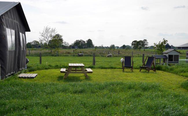 De tenten aan de andere kant, staan naast de schapenweide