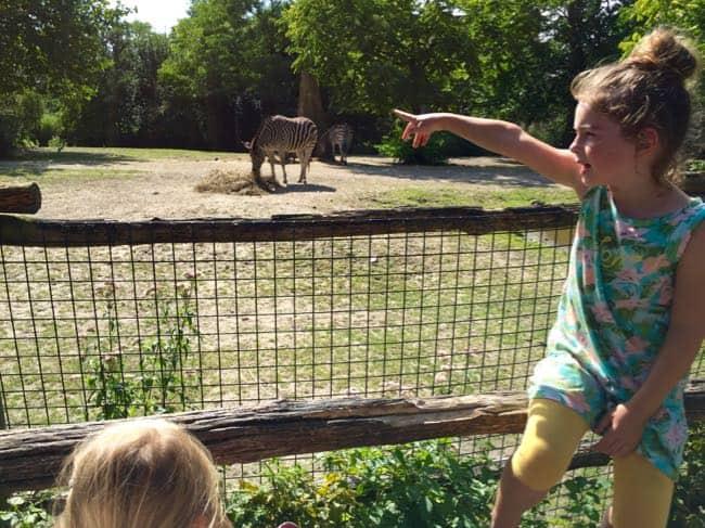 dierentuin-in-rotterdam-15