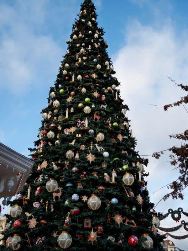 disneyland met de kerst - 4